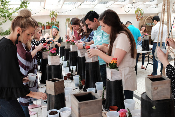 Succulent Potting Class April 18th
