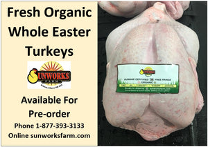 Fresh Organic Easter Turkeys