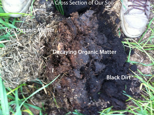 Growing Soil