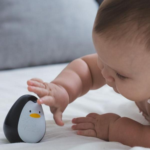 Plantoys Houten penguin