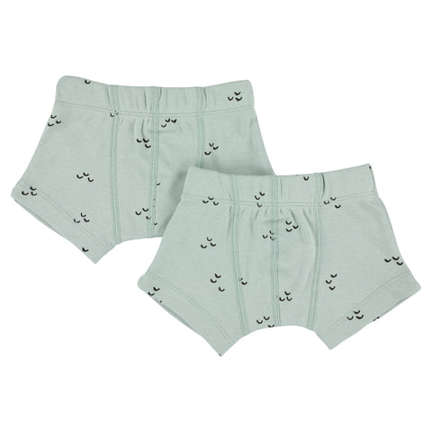 Trixie Boxershorts 2 pack | Mountains