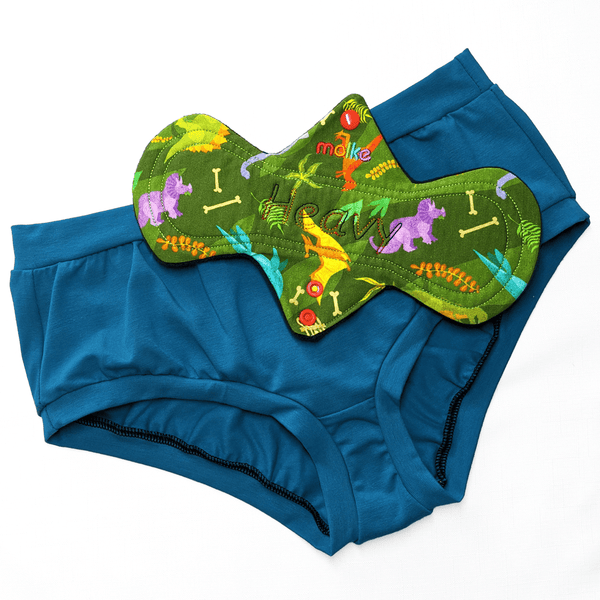 Flatlay of heavy flow CSP in dinos fabric on teal cotton briefs