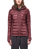 Women's Hybridge Lite Hoody in Elderberry