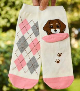 Adorable Socks  with Cute Dogs - [dog_momma_treats]
