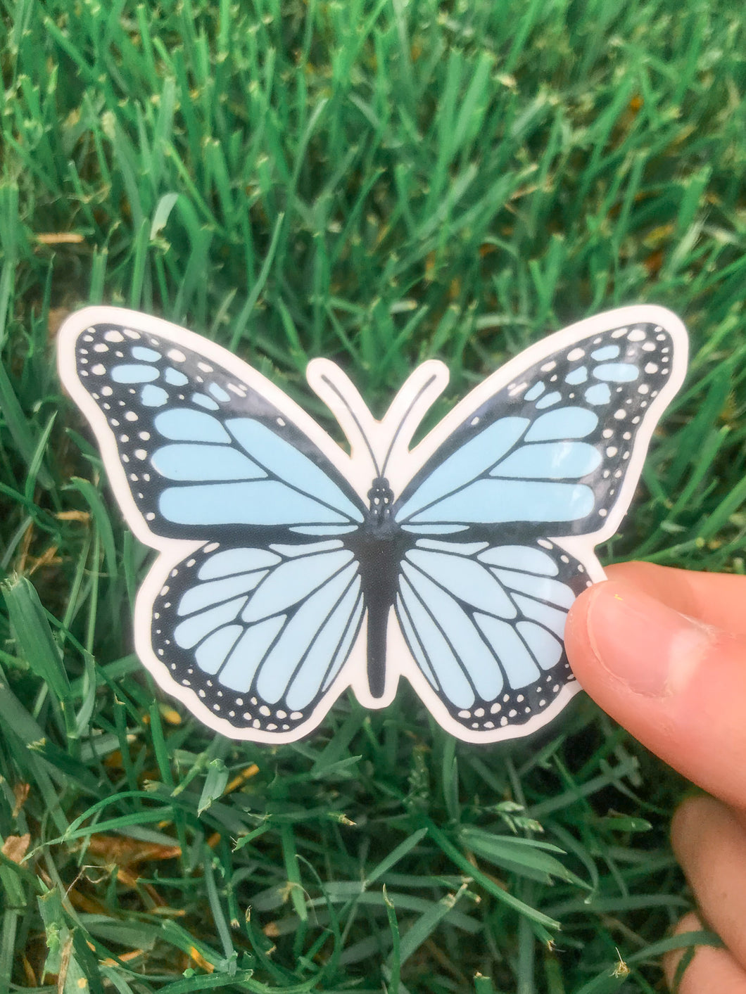 Light Blue Butterfly Sticker