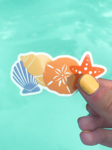 Seashell Sticker