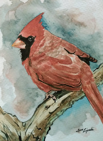 Cardinal Study (Watercolour and Ink)