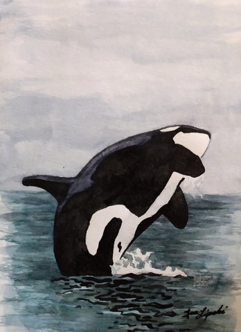 Orca Study (Watercolour and Ink)
