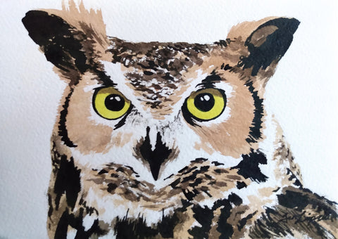 Horned Owl Study (Watercolour and Ink)