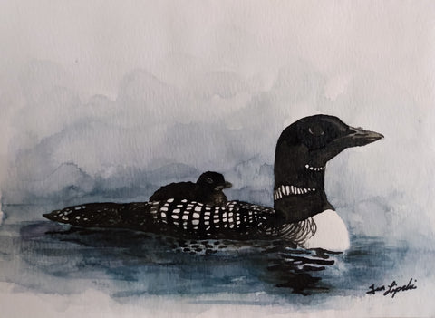Loon Family Study (Watercolour and Ink)