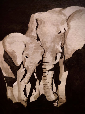 Elephant Study (Watercolour and Ink)