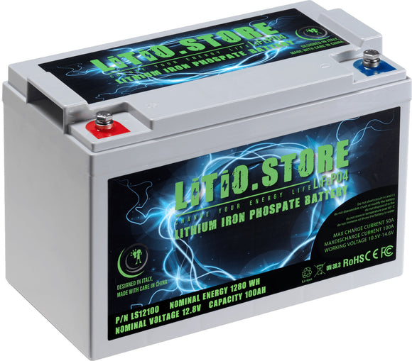 Batterie LiFePO4 12V 100Ah Lithium Fer Phosphate +BMS +10A charger
