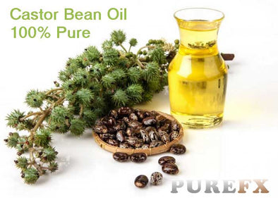 Castor Bean Oil 100% Pure