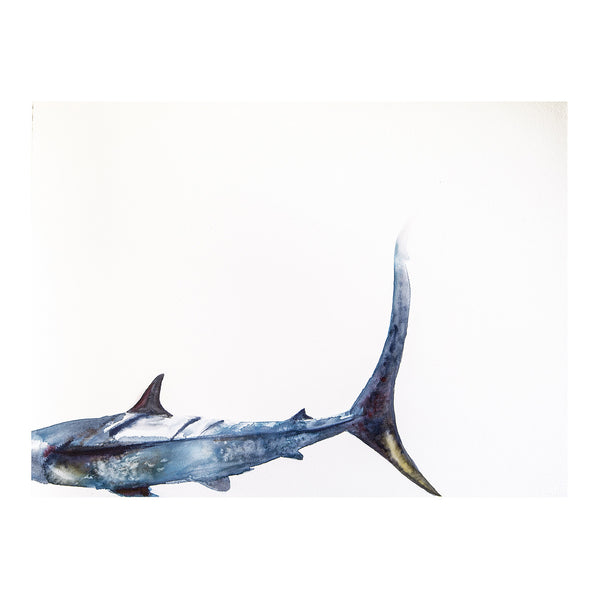 Blue Shark Tale of Woe - Print