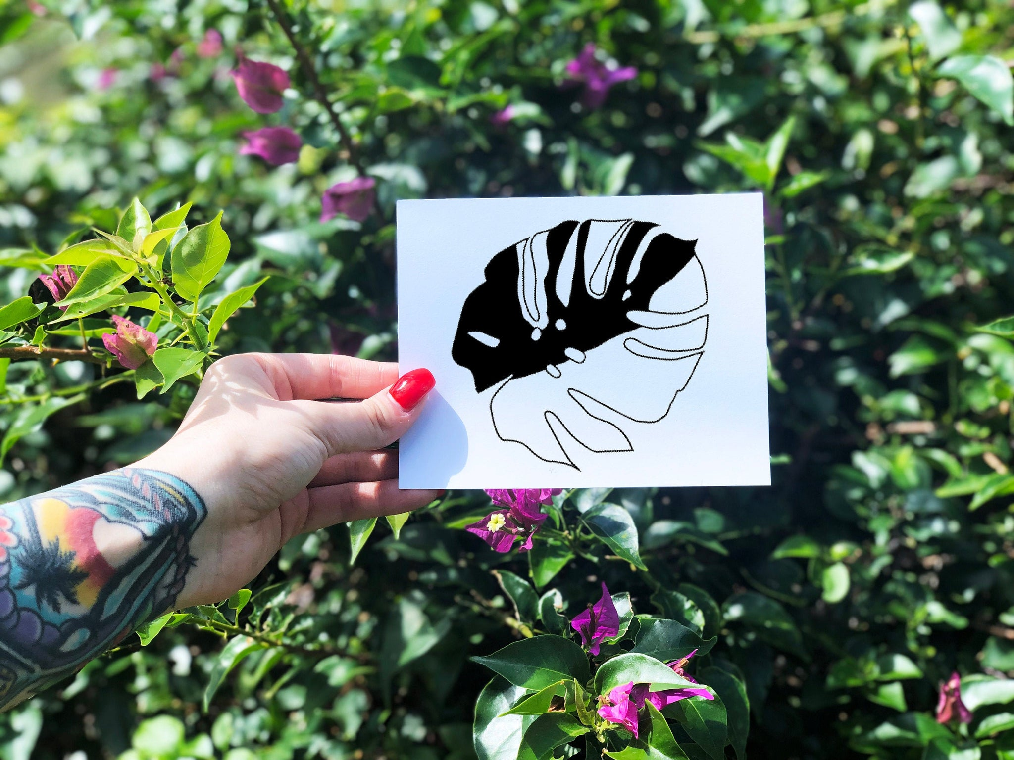 Variegated Monstera Decal