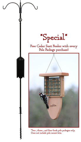 *SPECIAL* Two Arm Pole Package with FREE Suet Feeder