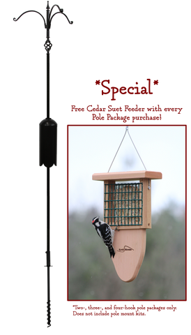*SPECIAL*  Three Arm Pole Package with FREE Suet Feeder