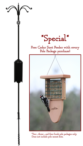 *SPECIAL* Four Arm Pole Package with FREE Suet Feeder
