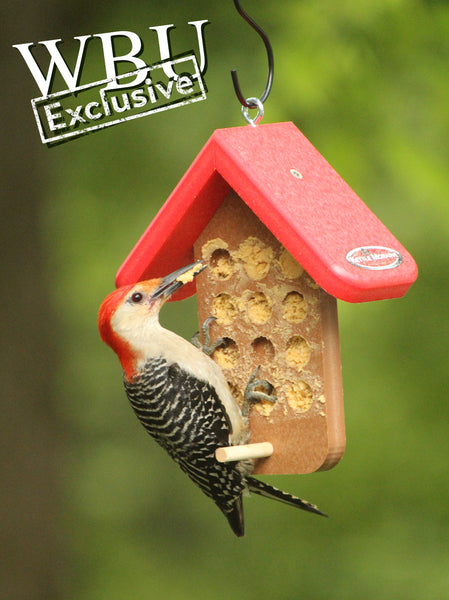 Recycled Bark Butter/PB Feeder (WBU Exclusive)