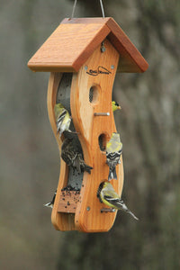 lots of goldfinches on cedar nyjer seed feeder