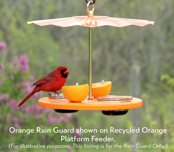 Rain Guard for Oriole Platform Feeders and Seed Cylinder Feeders