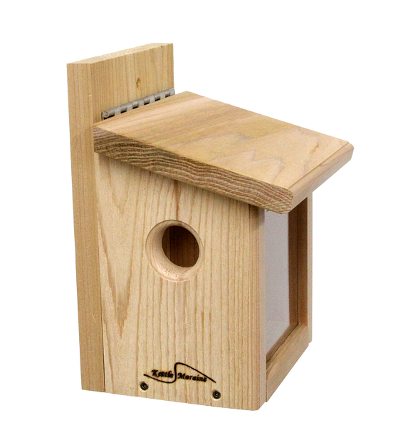 cedar bluebird feeder with viewing window