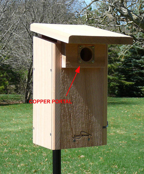 copper portal shown on bluebird nest box