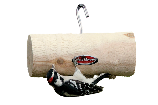 woodpecker upside down on cedar log feeder