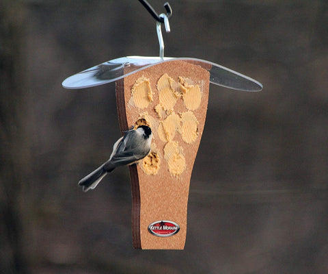 chickadee eating peanut butter on hanging feeder