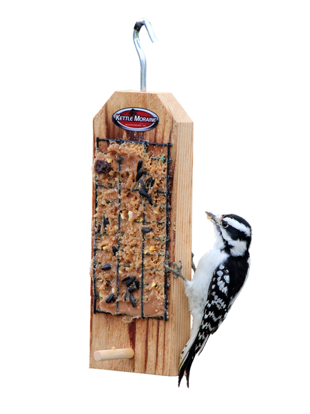woodpecker eating spreadable suet on feeder