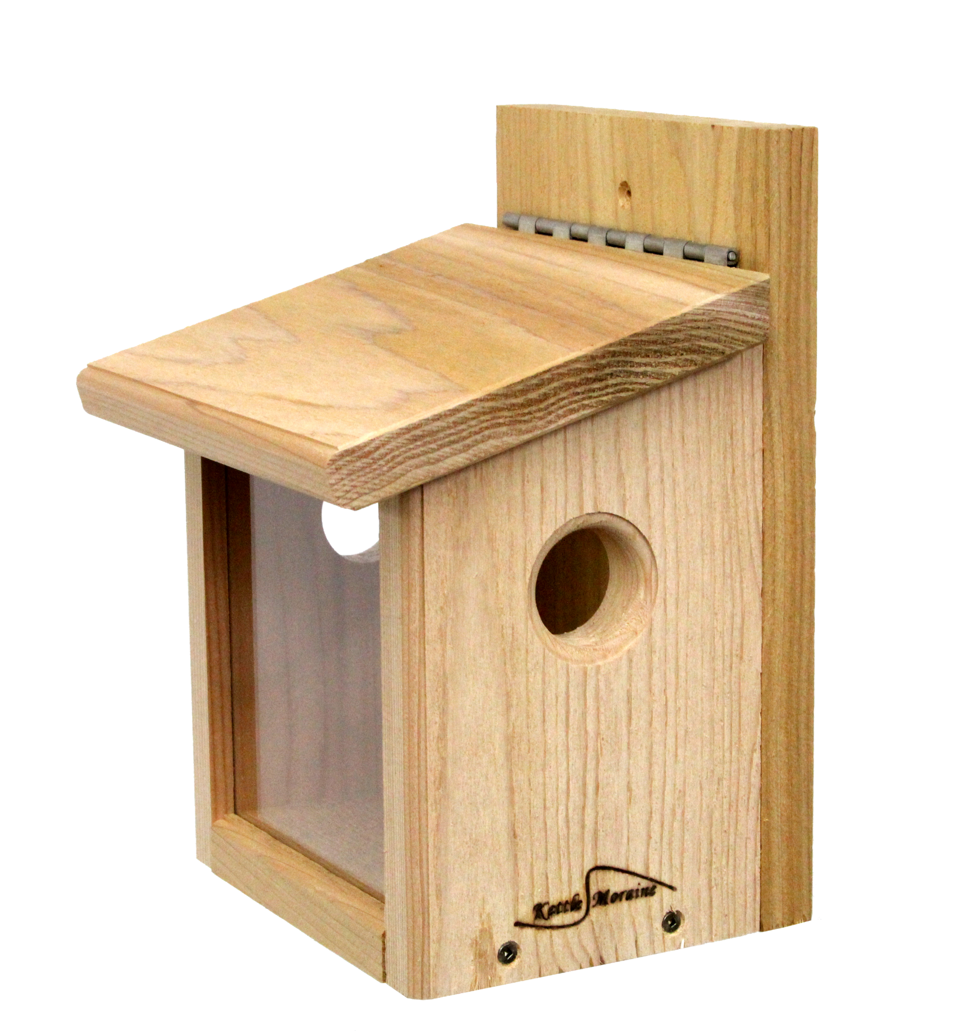 cedar bluebird feeder with hinged roof