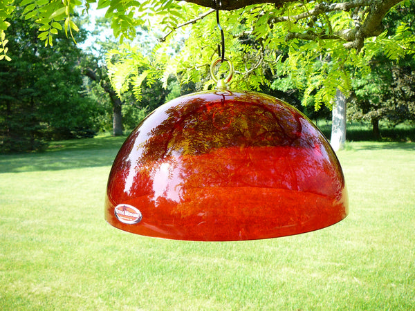 clear red dome to protect bird feeders