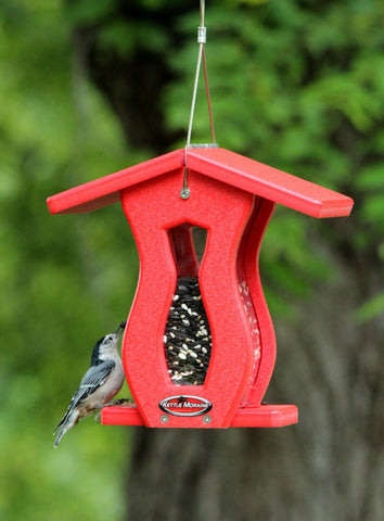 nuthatch perched on red roofed hopper feeder