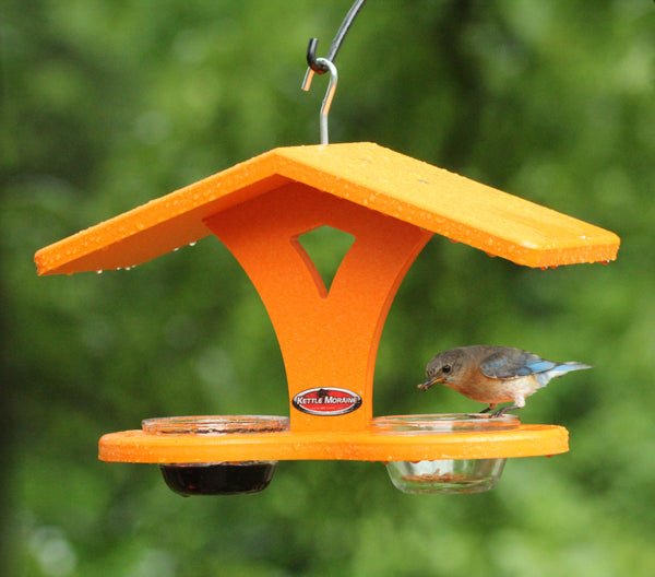 orange double cup feeder with bird