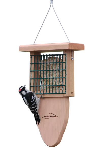 single cedar suet feeder with woodpecker