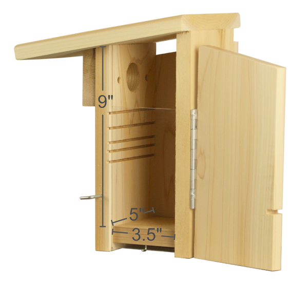 interior dimensions of cedar bluebird nest box with fledgling ladder