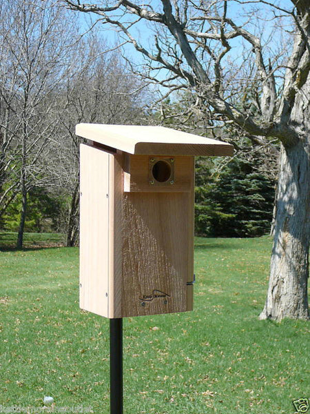 kettle moraine super bluebird house