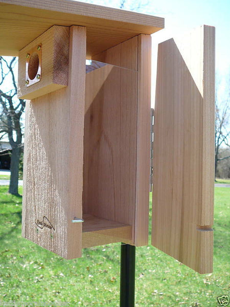 kettle moraine cedar bluebird nest box with side opening