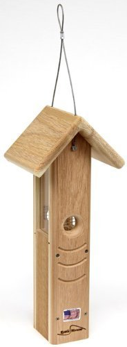 Tall cedar kettle moraine hanging woodpecker feeder