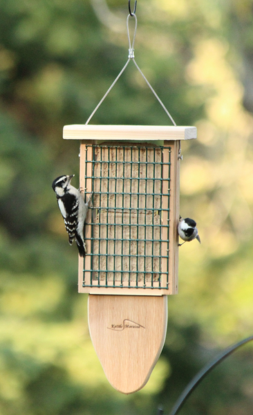 woodpecker and chickadee eating at cedar suet feeder