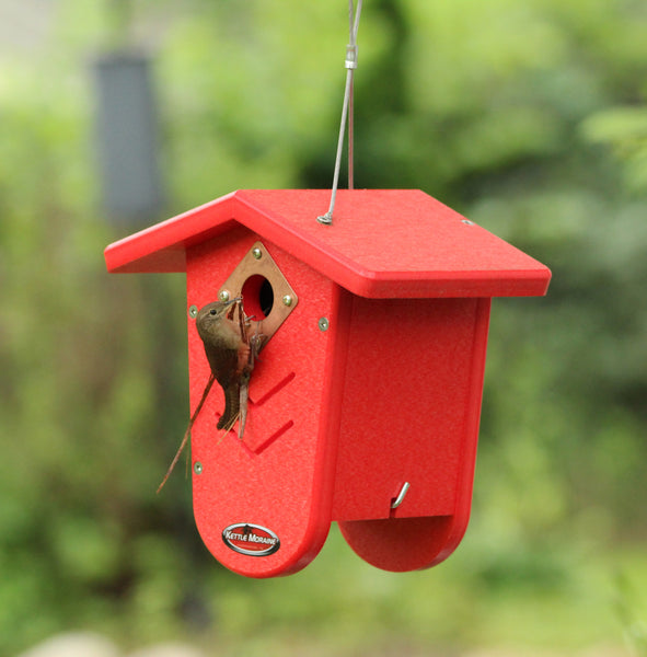 wren building nest in red bird house