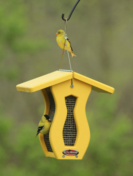 two goldfinches on yellow Kettle Moraine bird feeder