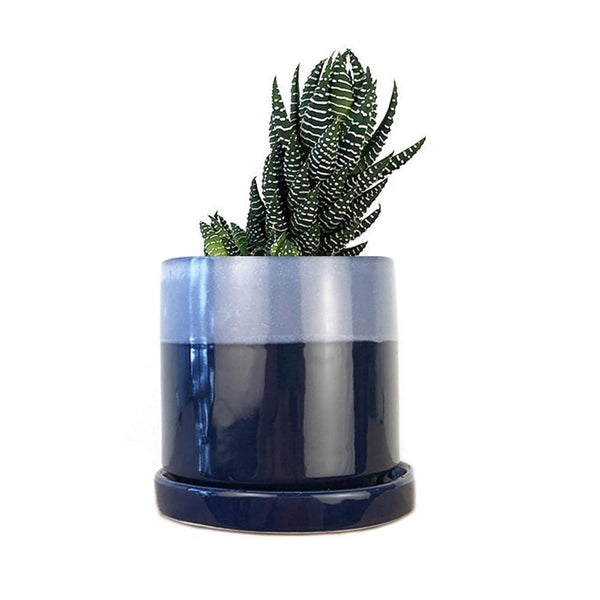 "3"" Planter - Cobalt Blue"