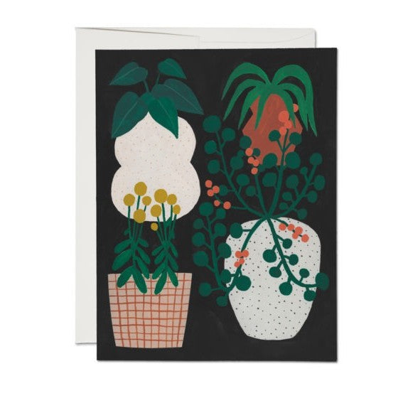 Indoor Plants Card