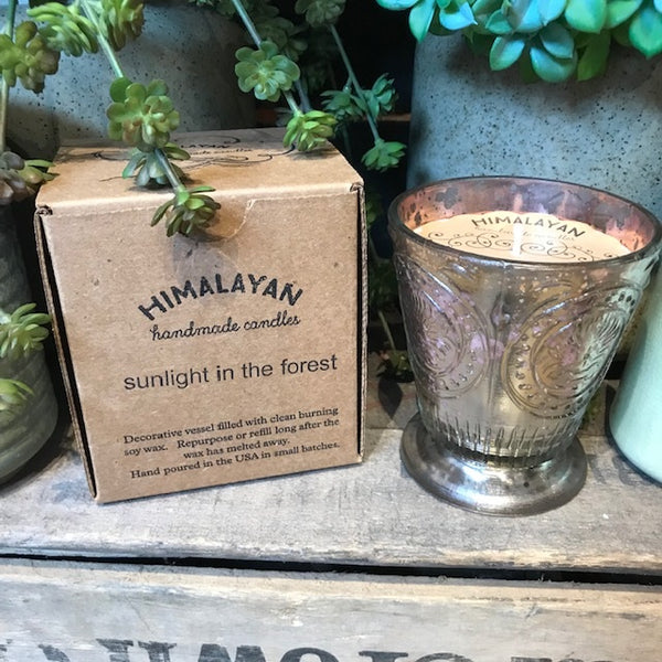 Himalyan Fleur De Lys Candle - Sunlight in the Forest