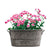1 Pcs Retro Galvanized Iron Flowerpot