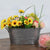 1 Pcs Retro Galvanized Iron Flowerpot.