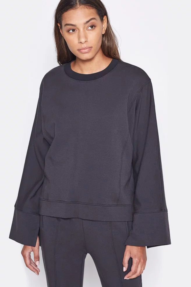 joie ashton sweatshirt