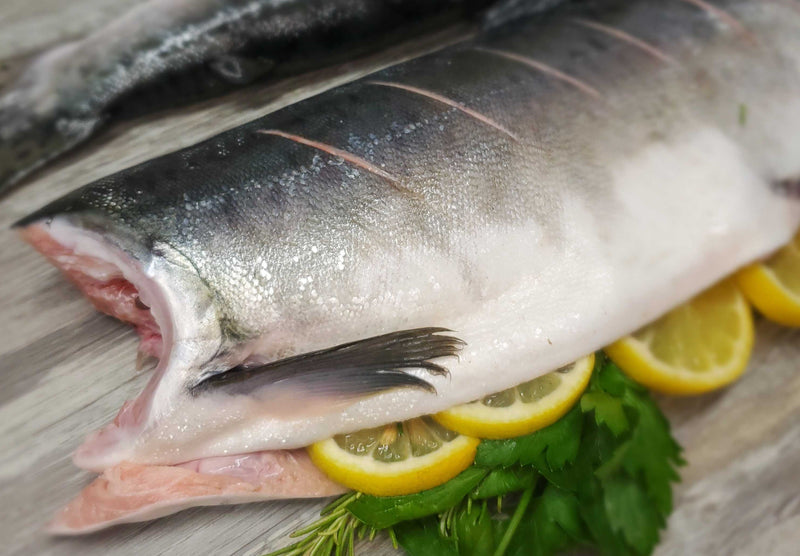 Fresh Wild BC Whole Pink Salmon 40lb SOLD OUT