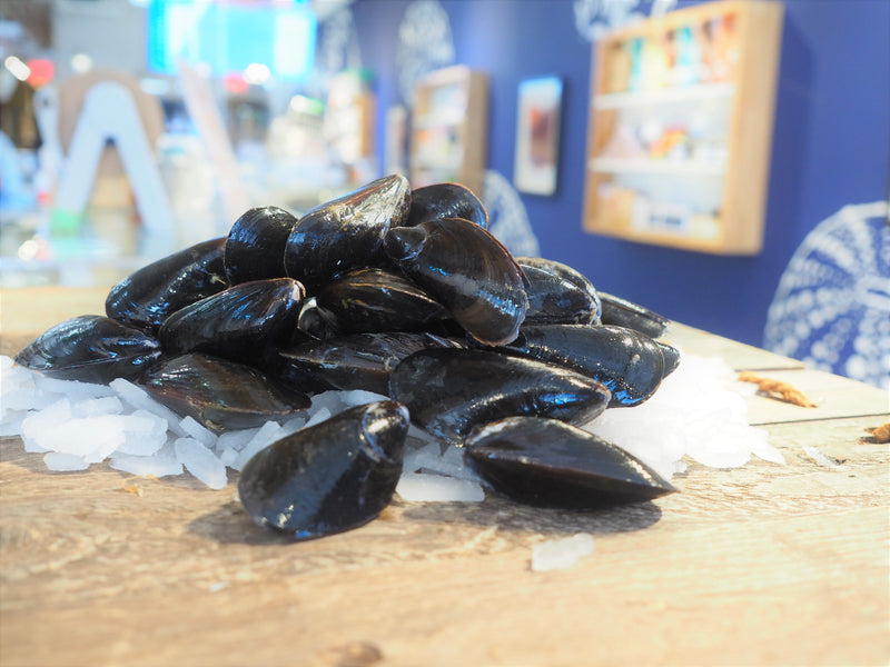 Live Local Gallo Mussels
